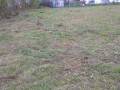 Grundstück am 6.11.2013 Wetter: leichter Regen